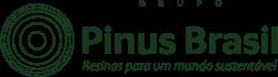 Pinus Brasil